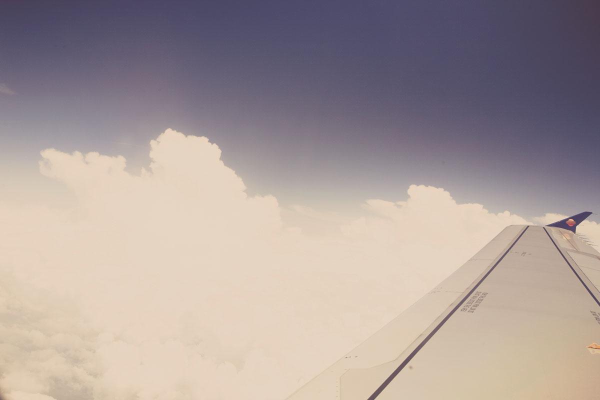 plan_wing
